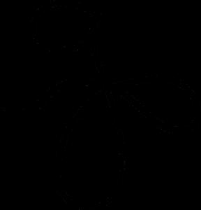 floritura-abajo