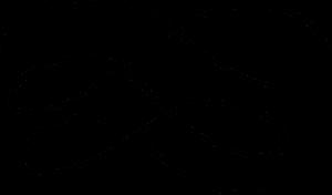 floritura-sinfinito