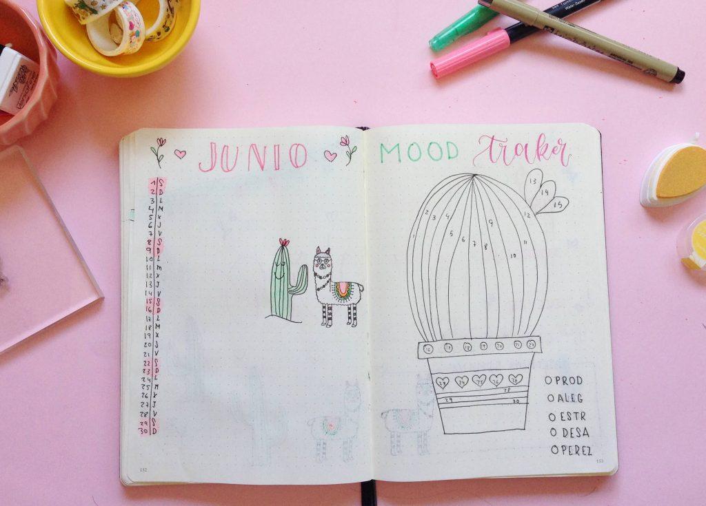 bullet journal-junio-mes-vista