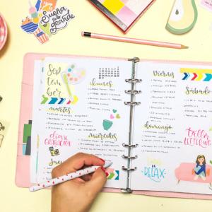2-tips-de-organizacion-y-reglas-de-diseño